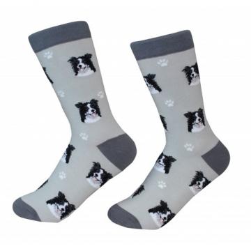 Border Collie Socks