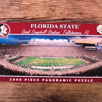 College Puzzle | Florida State University